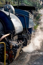 Steam locomotive of Darjeeling Himalayan Railway puffing its way