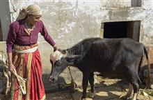Kumaoni lady at her home